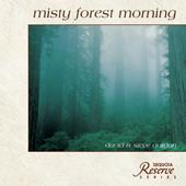 X204_170px_Misty_Morning